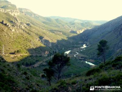 Sierra de Enmedio - Río Guadiela;mochilas para trekking tejo taxus baccata arbol del tejo